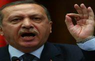 أردوغان: سنطرد القوات السورية لما وراء مواقع المراقبة بإدلب هذا الأسبوع