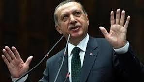 """أردوغان: لا خيار أمامنا سوى مواصلة مسارنا الخاص """"بالمنطقة الآمنة"""" في سوريا"""
