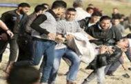 مطالب بتشكيل لجنة تحقيق دولية في جرائم الاحتلال الإسرائيلي على حدود غزة