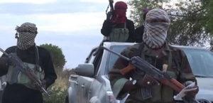 مقتل 10 مسلحين من بوكو حرام جنوبي شرق النيجر