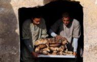 مصر تكتشف 7 مقابر أثرية جديدة في منطقة سقارة