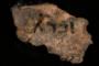 اكتشاف نقوش صخرية أثرية تعود إلى 835 عاما شمالي الصين