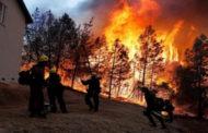 ارتفاع حصيلة ضحايا الحرائق بولاية كاليفورينا إلى 31 حالة وفاة