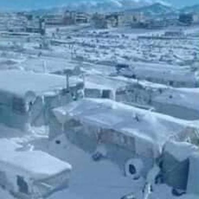 منظمة الصحة العالمية: وفاة 29 طفلا خلال الأسابيع الماضية في مخيم الهول السوري