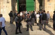 عشرات المستوطنين يقتحمون الأقصى بحراسة مشددة من الاحتلال الإسرائيلى