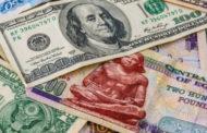 استقرار سعر الدولار امام الجنيه في البنوك الحكومية والخاصة