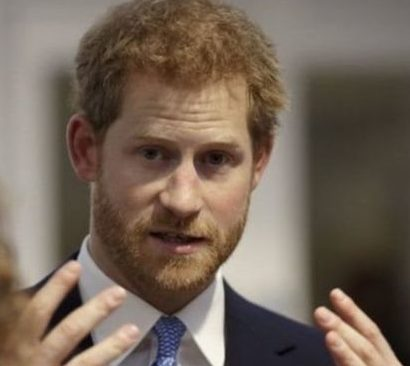 الأمير البريطاني هاري يدعم خطة لوضع السياحة على مسار أكثر استدامة