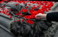 80% من الكنديين يرون أن على كندا أن تفعل المزيد لتكريم قُدامى محاربيها