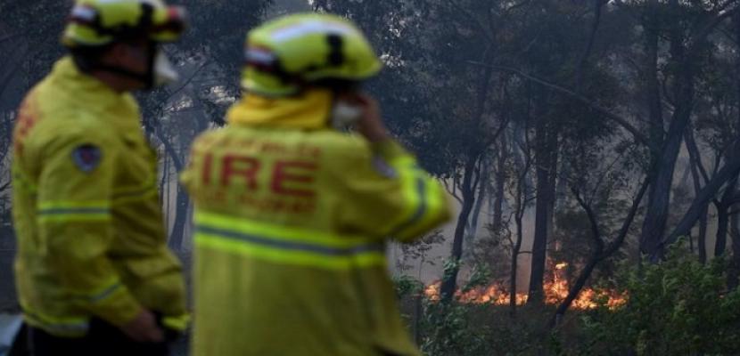حرائق الغابات تشتد في أستراليا والسلطات تخلي بلدات