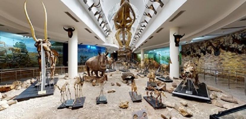 السياحة والآثار تنظم زيارة افتراضية للمتحف الحيواني بحديقة الحيوان
