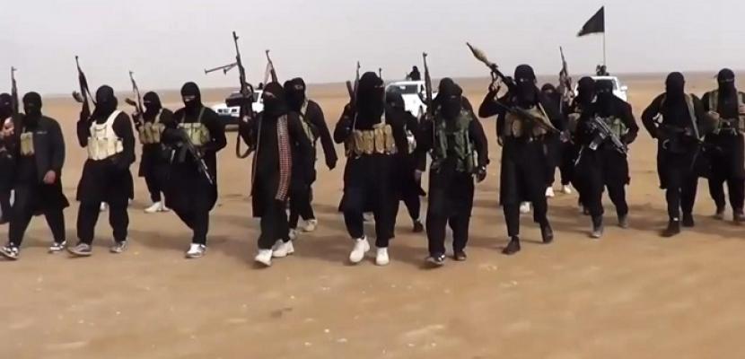 الجيش الأمريكى يعلن مقتل اثنين من كبار قادة داعش بسوريا