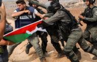 مواجهات في جنوب نابلس بين الجيش الإسرائيلي وفلسطينيين