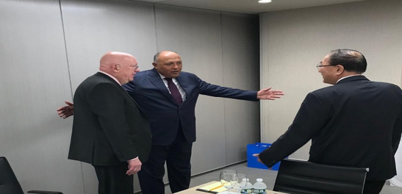 شكري يؤكد لمندوبي روسيا والصين لدى الأمم المتحدة ضرورة اضطلاع مجلس الأمن بمسئولياته تجاه قضية سد النهضة