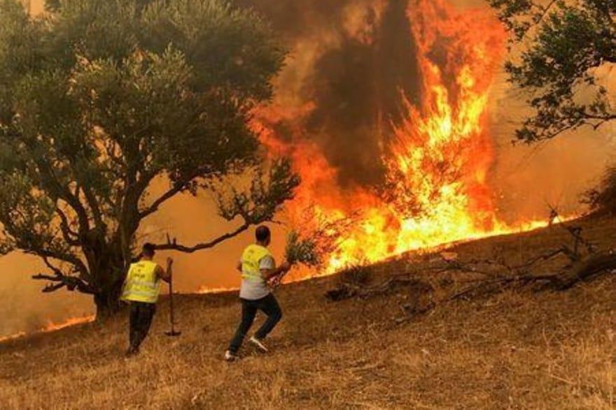 الرئيس الجزائري يصف الحرائق في بلاده بالكارثة ويعلن اعتقال 22 مشتبها بهم